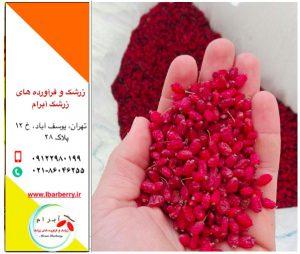 قیمت خرید عمده زرشک - شهریور ۹۸